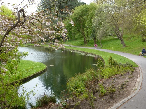 Sefton-park